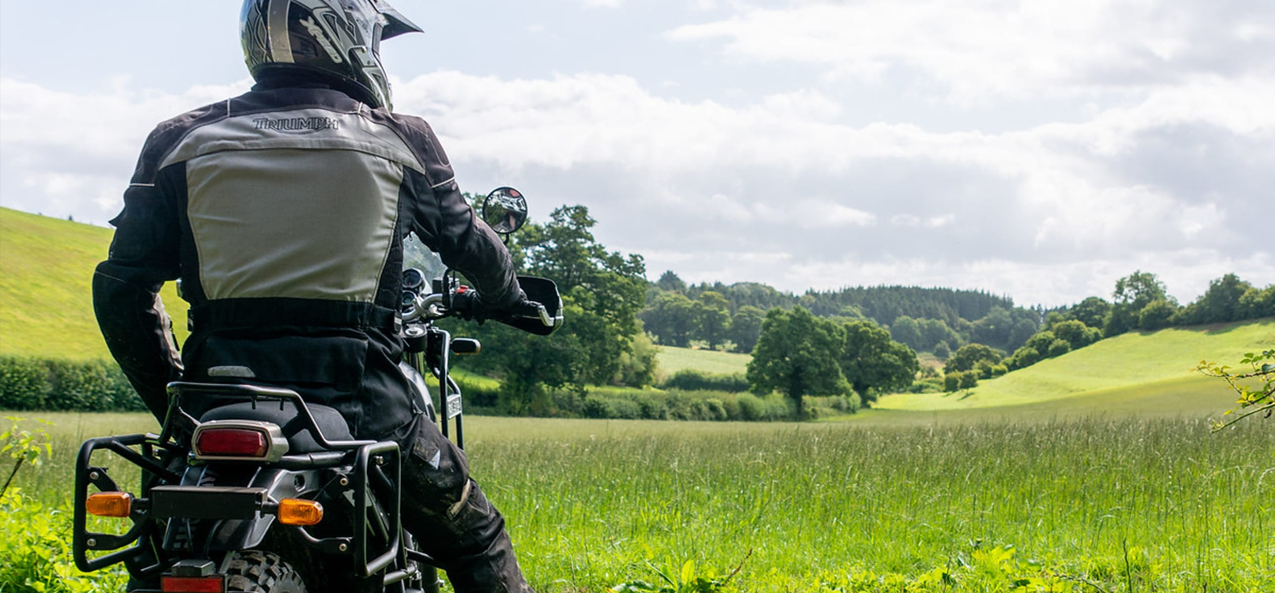Rider looking out across Dorset countryside