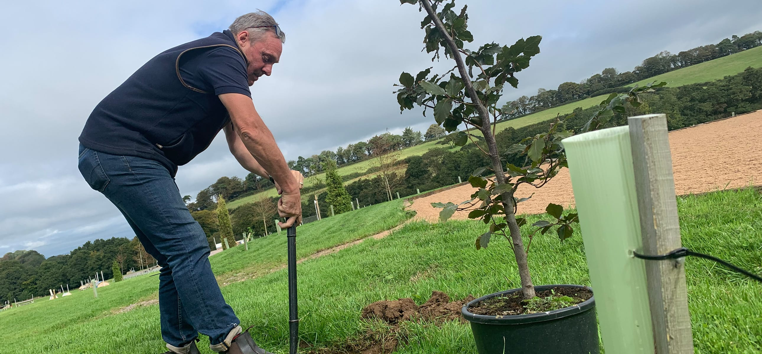 Tree planting on the Estate